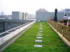 鄭州專業屋頂綠化公司青青屋頂綠化是你理想的選擇
