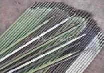 R717耐熱鋼焊條